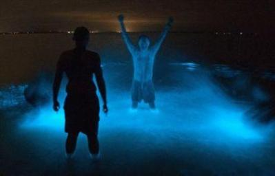 Danau Gippsland: Air di Danau Ini Bisa Menyala di Malam Hari