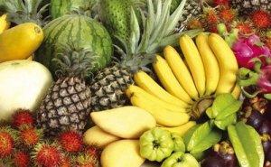 https://nizarsuryantara.files.wordpress.com/2011/07/buah-buahantempatan.jpg?w=300